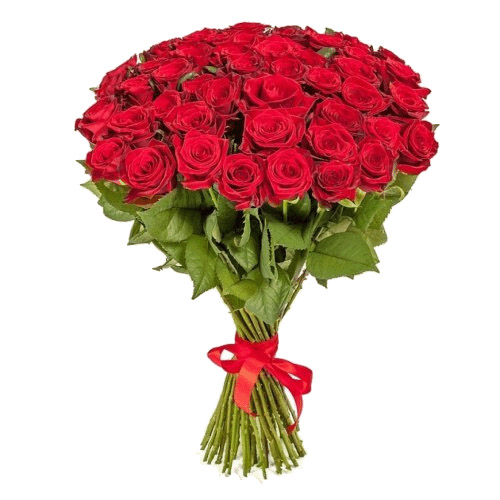 Фото товара 51 червона троянда в Ужгороде