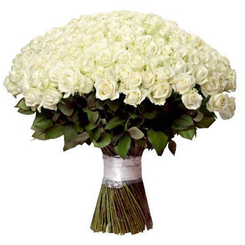 фото букета 201 белая роза
