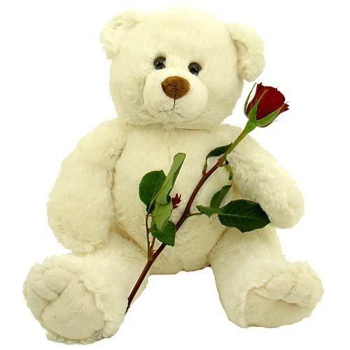 "Фото товара Мишка с букетом роз и ""Raffaello"" в Ужгороде"