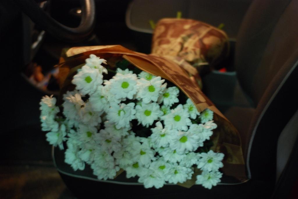 Фото товара 11 ромашковых хризантем в Ужгороде