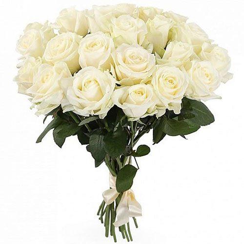 букет 21 біла троянда