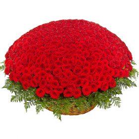 1001 червона троянда фото товару