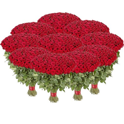 1001 красная роза фото товара