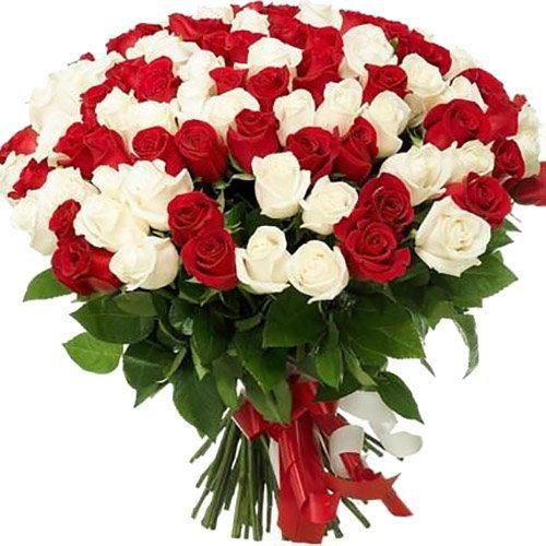 Фото товара 101 красная и белая роза в Ужгороде