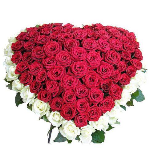 Фото товара 101 роза сердцем - белая, красная в Ужгороде