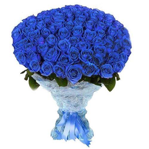 Фото товара 101 синяя роза (крашеная) в Ужгороде