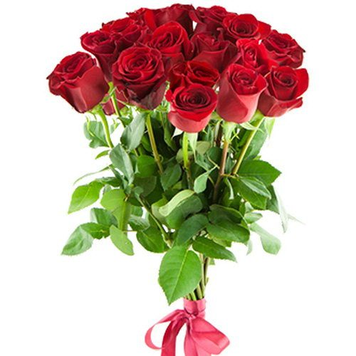 Фото товара 15 імпортних троянд в Ужгороде