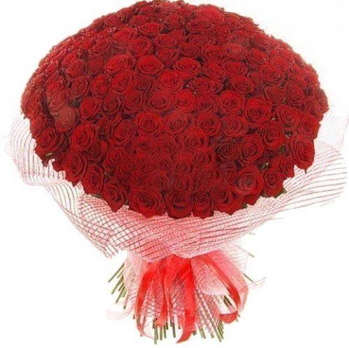 Фото товара 201 красная роза в Ужгороде