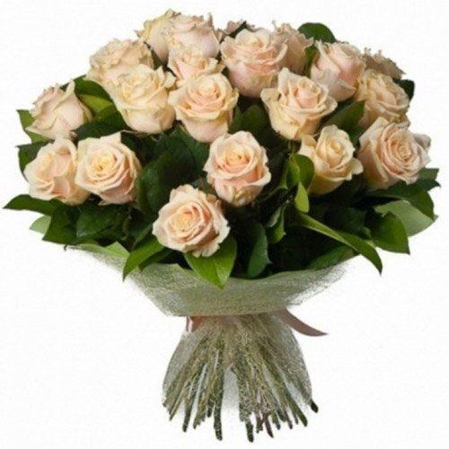 Фото товара 33 кремові троянди в Ужгороде