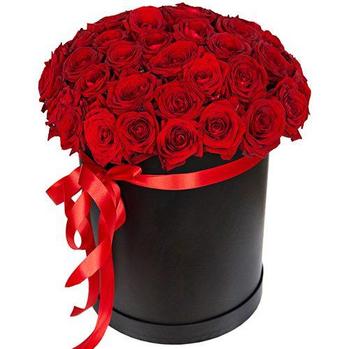 Фото товара 51 троянда червона в капелюшній коробці в Ужгороде