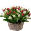 Фото товара 51 тюльпан у кошику в Ужгороде