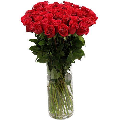 Фото товара Роза импортная красная (поштучно) в Ужгороде