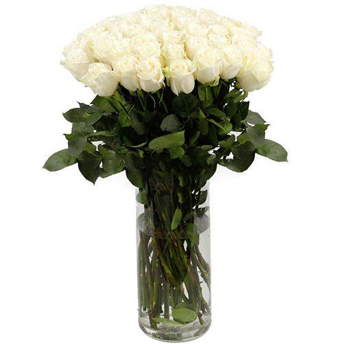 Фото товара Роза импортная белая (поштучно) в Ужгороде