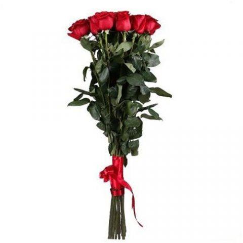 11 метровых роз