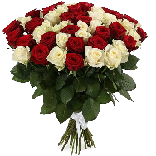 Фото товара 51 червона та біла троянда в Ужгороде