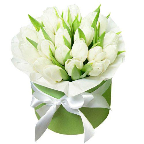 Фото товара 21 білий тюльпан у коробці в Ужгороде
