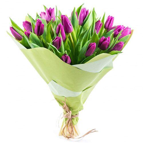 Фото товара 25 пурпурных тюльпанов в Ужгороде