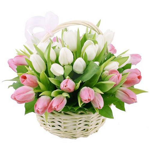 """Фото товара Кошик """"Перший поцілунок"""" (25 тюльпанів) в Ужгороде"""