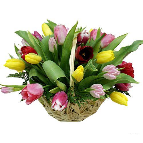 Фото товара 25 тюльпанов микс в корзине в Ужгороде
