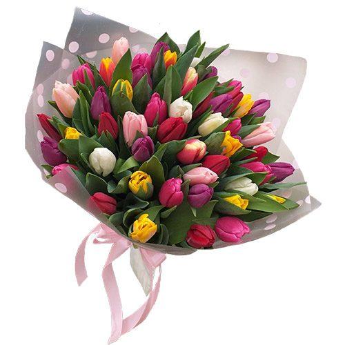 Фото товара 51 тюльпан микс (все цвета) в Ужгороде