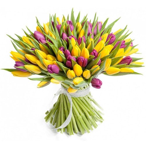 Фото товара 75 фиолетово-жёлтых тюльпанов в Ужгороде