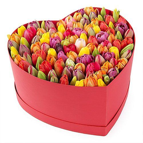 Фото товара 101 тюльпан в коробке сердцем в Ужгороде