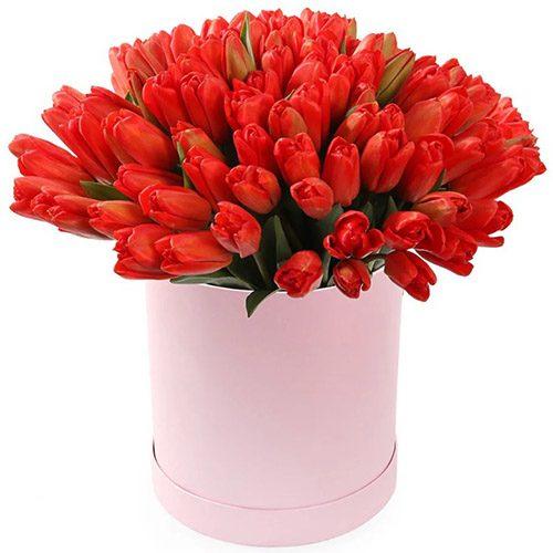 Фото товара 101 червоний тюльпан у коробці в Ужгороде