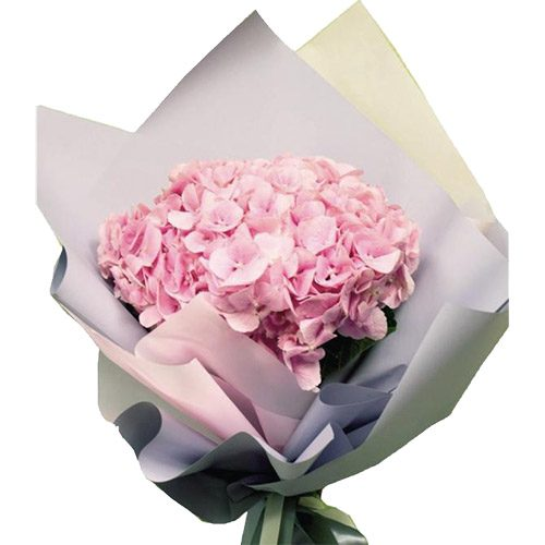 Фото товара Розовая гортензия в Ужгороде