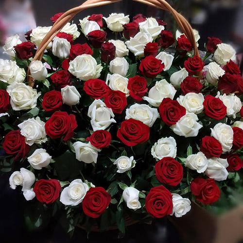 Фото товара Корзина красных и белых роз в Ужгороде