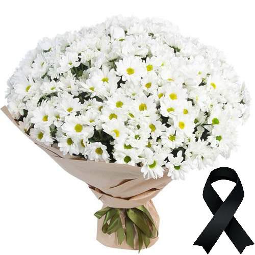 Фото товара 100 ромашок на похорон в Ужгороде